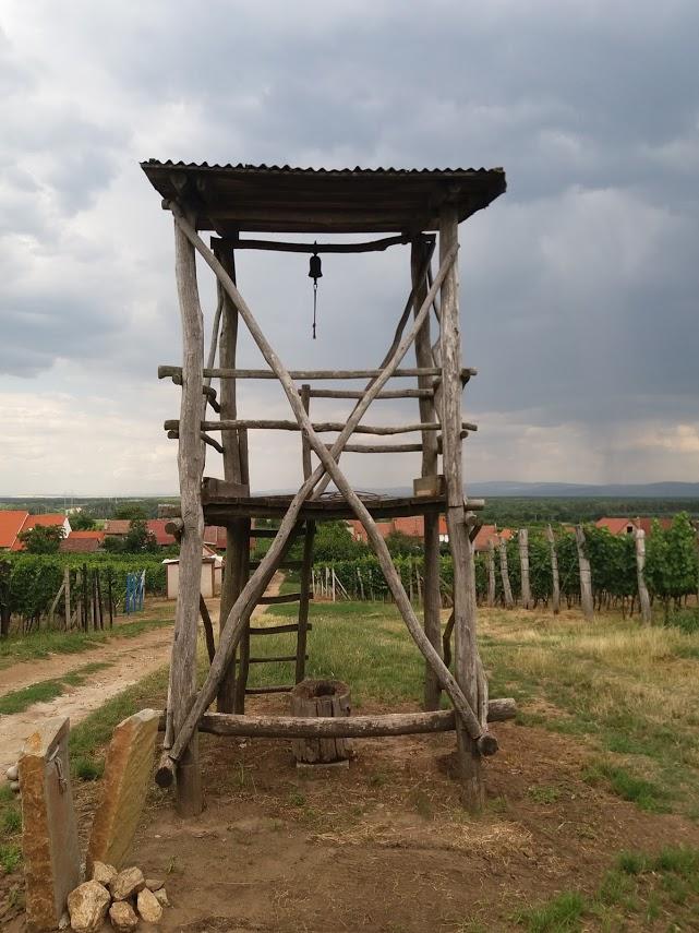 Rozhledna mezi vinicemi